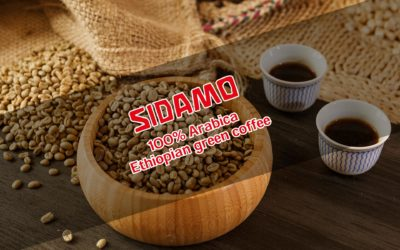 Äthiopischer Sidamo Kaffee – hervorragende Qualität & feiner Geschmack